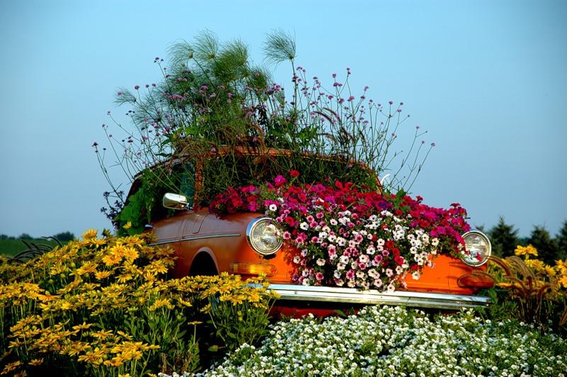 Как оформить цветник на даче