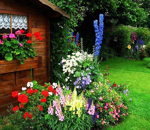 Красивые палисадники перед домом