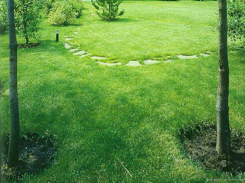 Рулонный искусственный газон