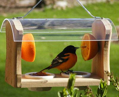 Кормушки для птиц фото