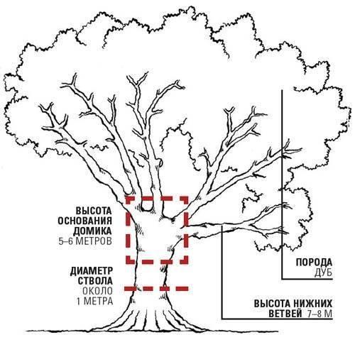 как сделать домик на дереве