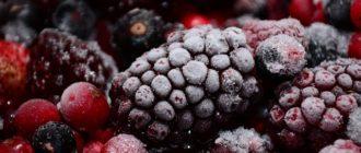 ягоды в инее