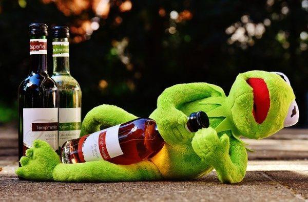 лягушка с вином