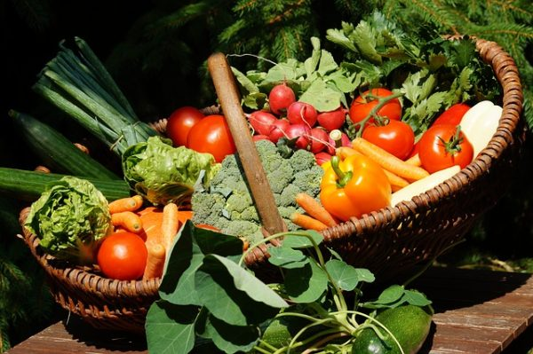 овощи с дачи